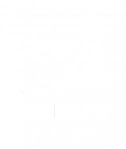 Drifter in car 003